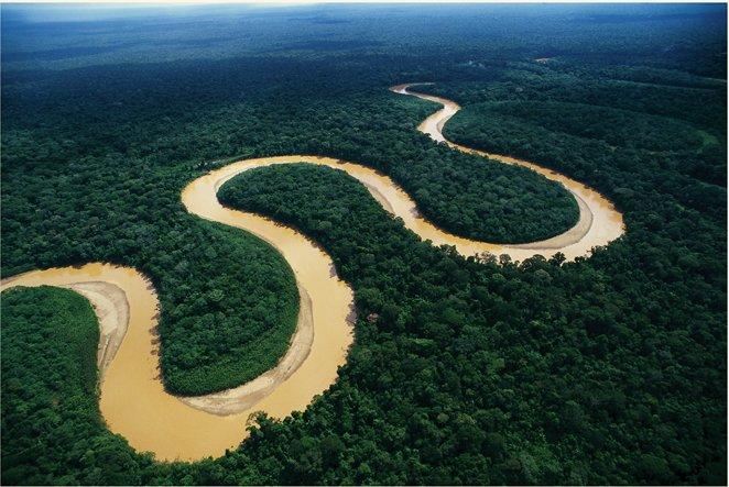 Parque Nacional Madidi – Selva y Pampas